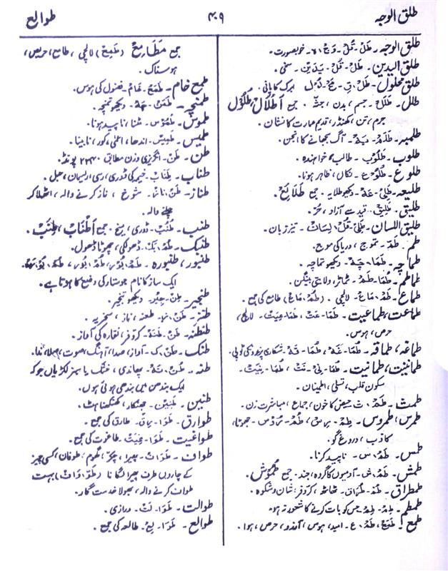 Meaning Of Tanz Rekhta